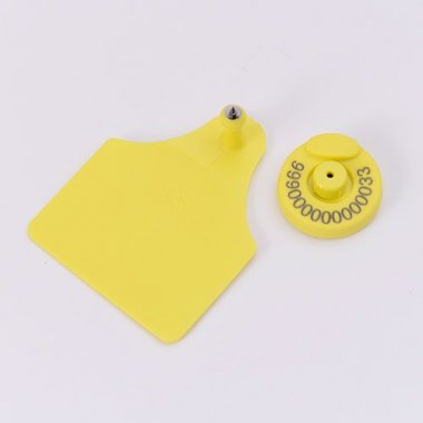FDX-B Ear Tag with Visual Pad